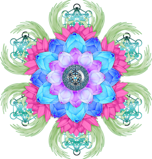 lotus-flower-3650472_640.png